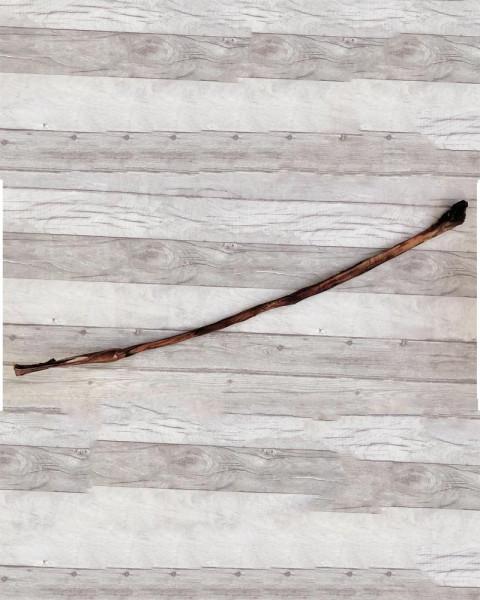 TierFit XXL Ochsenziemer mit Fleischknubbel ca.100cm