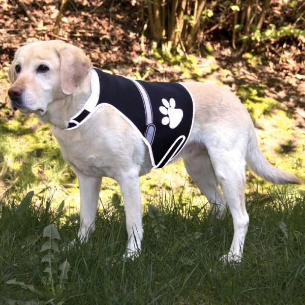 Trixie Flash Sicherheitsweste für Hunde